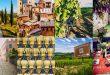 Экскурсия из Флоренции: Замок Брунелески, Кьянти и пейзажи Тосканы