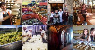 Эногастрономический тур по Тоскане