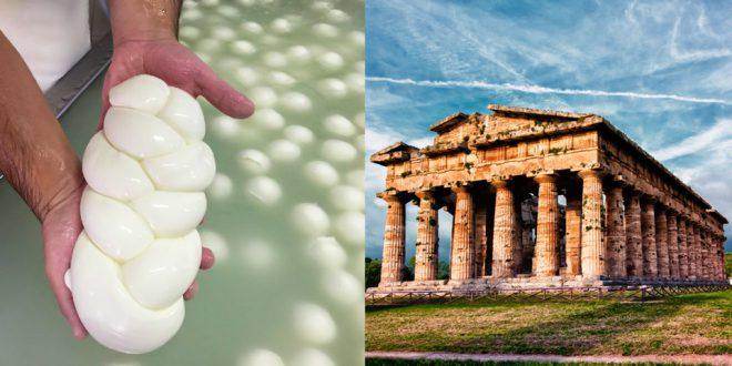 Тур из Неаполя на производство моцареллы и в Древний город Пестум