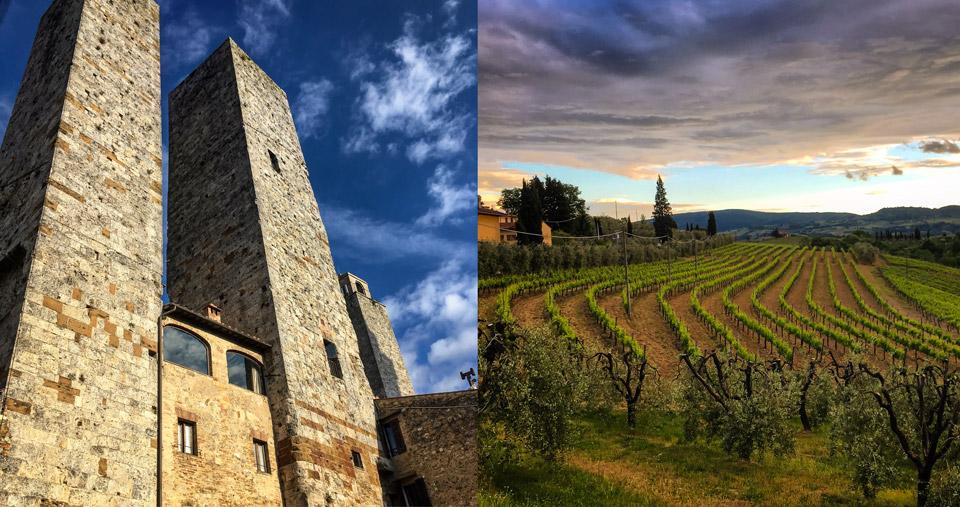 Виноградники в Тоскане