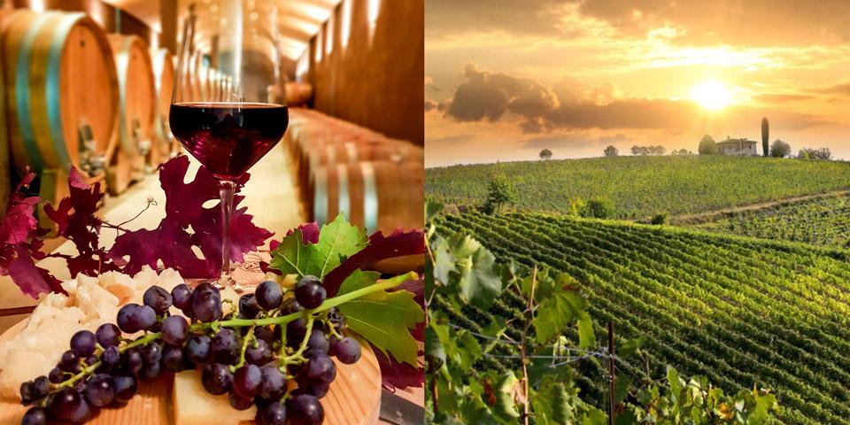 Экскурсия из Вероны в винодельни и дегустация